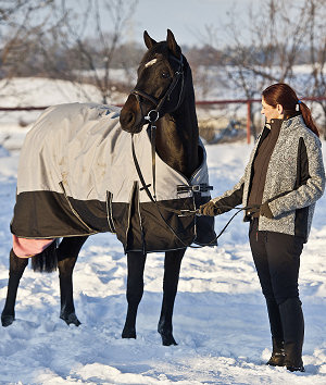 The talented young dressage gelding now lives in Switzerland and will be trained and developed further there.