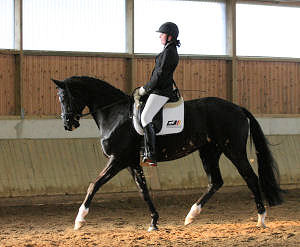 Anna with Sanara in a dressage test for young horses.