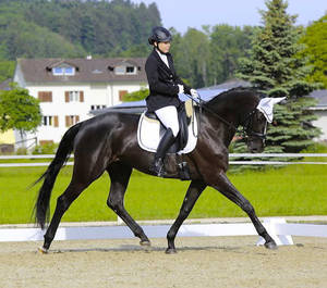 It's Pretty in her very first show in Switzerland, Aadorf TG, CH. Photo: Af-fotografie.ch