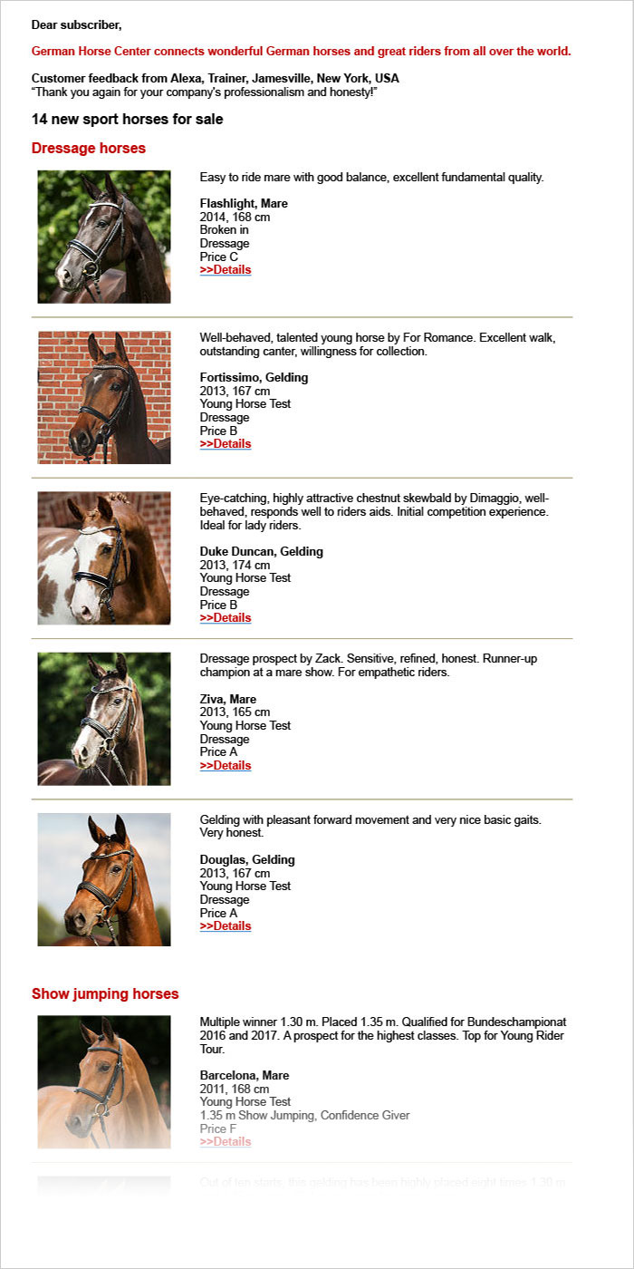 Example of a German Horse Center Newsletter