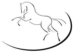 pferdeklinik mühlen