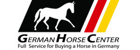 German Horse Center. Full service for buying a horse in Germany